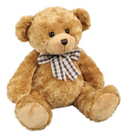 teddy bear small-